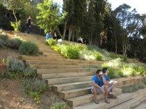 Experiències educatives i creiteris de qualitat en les activitats relacionades amb sistemes forestals urbans.